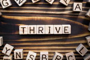 embrace intrapreneurship will thrive stellar kent
